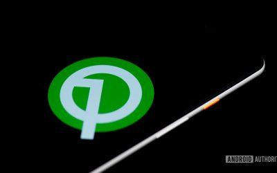 Google наконец-то заменили пасхалку в Android Q чем-то веселым